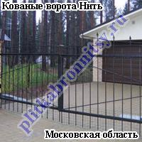 Кованые ворота Нить