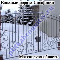 Кованые ворота Симфония
