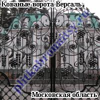 Кованые ворота Версаль