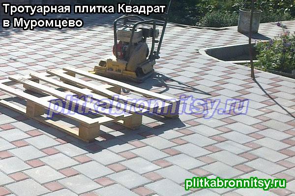 Укладка тротуарной плитки от производителя в деревне Муромцево Воскресенского района